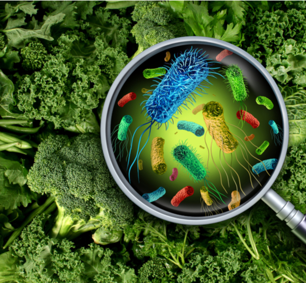 DG - Bacteria and germs on vegetables and the health risk of ingesting contaminated green food