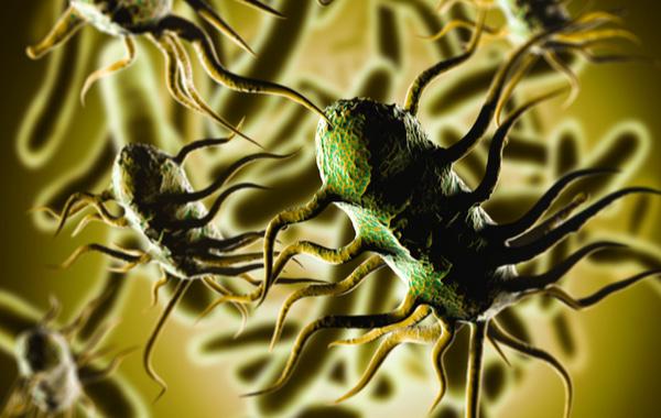 3D illustration of bacterium Listeria