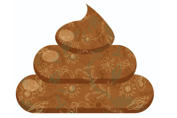 Image of a fecal